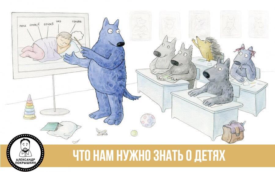 детский психолог и игровой терапевт Александр Покрышкин о том, что важно знать родителям о своих детях