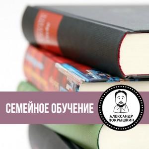 Детский психолог Александр Покрышкин о семейном обучении